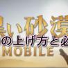 【黒い砂漠モバイル】戦闘力の上げ方-戦闘力を上げる為に必要なこと